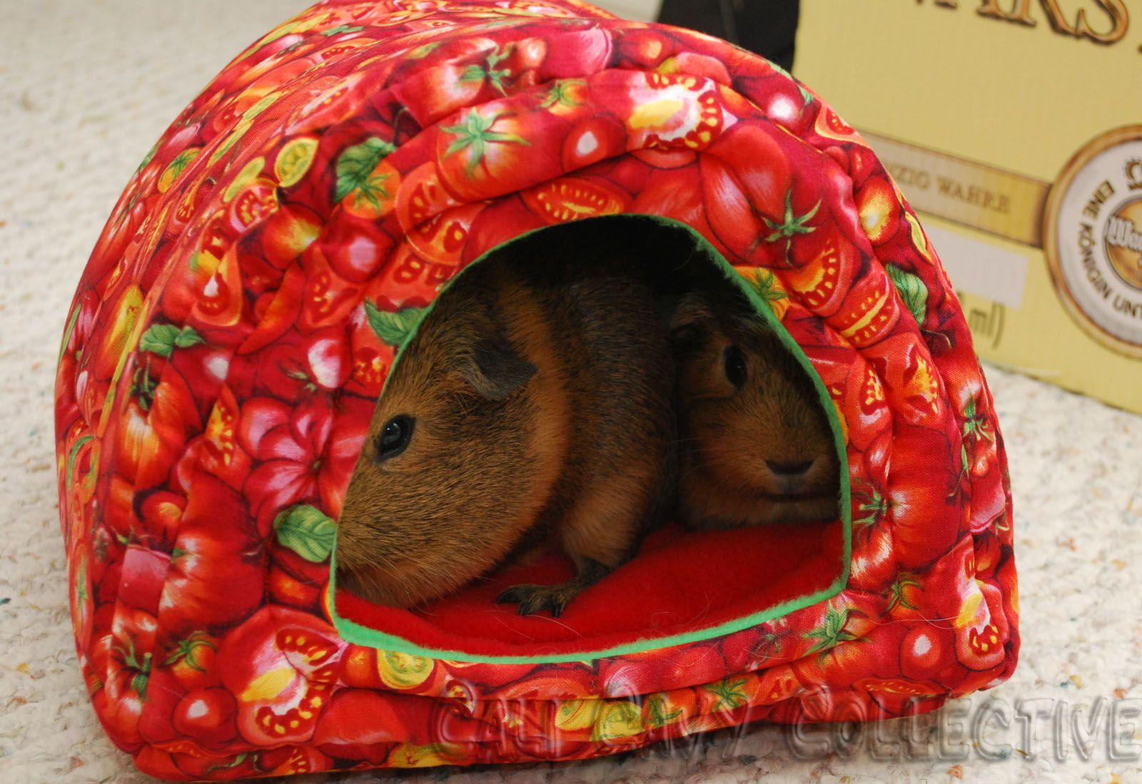 Guinea pig bed pattern fits two pigs comfortabl