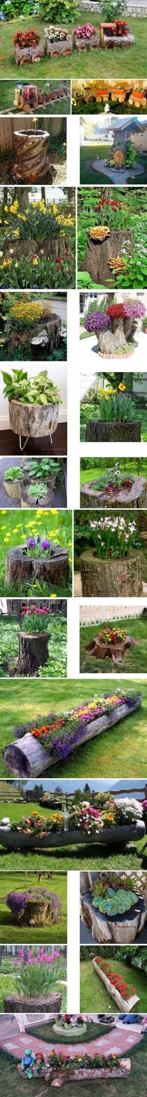 Old light fixtures turned into planters