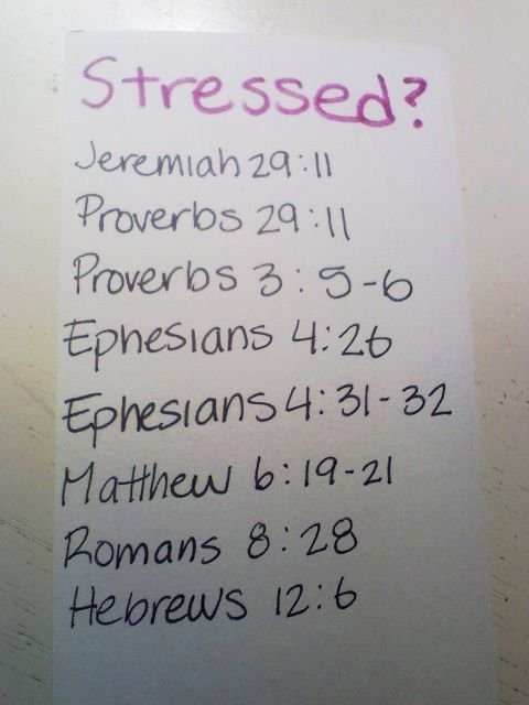 Stressed bible